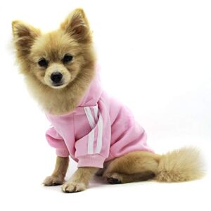 ¿buscas El Mejor Precio Para Comprar Ropa Perros Pomerania Oferta Aqui