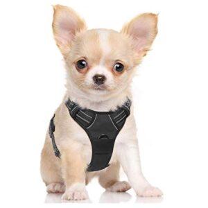 Arneses Perros Pequenos Los 9 Top Ventas Este Mes En La Red
